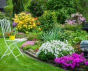 شركة تنسيق حدائق في الشارقة