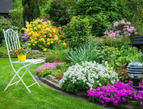 شركة تنسيق حدائق في الشارقة |0543527720|| ديكورات حدائق