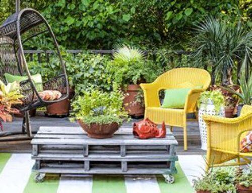 شركة تنسيق حدائق في ام القيوين |0543527720| تنفيذ وتصميم