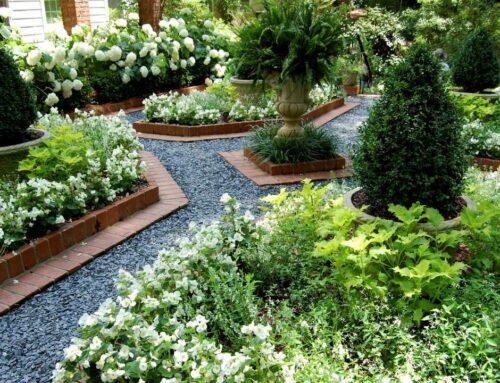 شركة تنسيق حدائق في عجمان |0543527720|  تصميم حدائق